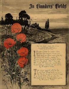 Poppies - Flanders Fields