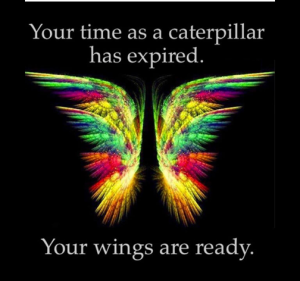 Your time as a caterpillar has expired, your wings are ready.